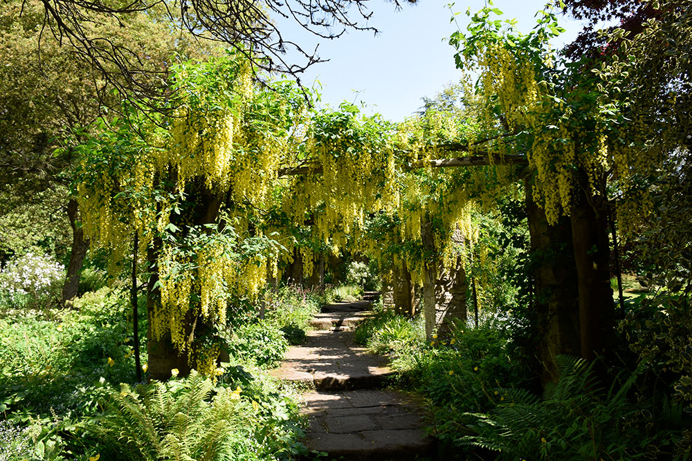 Historical Gardens of Harrogate, England - Self-Guided Day ...