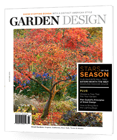 Autumn 2016 - Issue 196