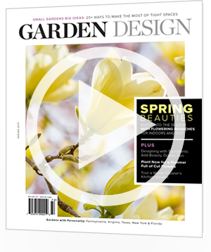 Spring 2017 - Issue 198
