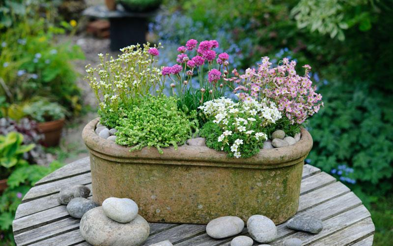 Garden Design Magazine Winter 2017 Garden Design