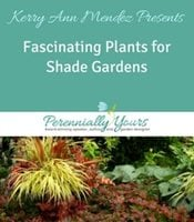 Fascinating Plants for Shade