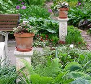 Captivating Small Garden, Big Interest Eric Sternfels (Homeowner) Philadelphia, PA