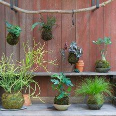 12 Easy DIY Garden Ideas