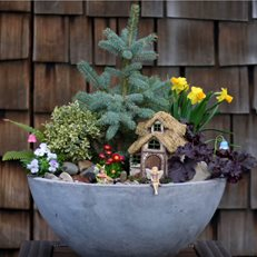 Diy Fairy Garden, Spring Fairy Garden Garden Answer