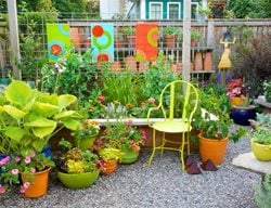 Bright Patio With Containers Container Garden Pictures Linda Ernst Portland, OR