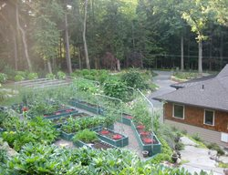 Edible Garden Pictures Nancy Hallberg (Homeowner) Waccabuc, NY