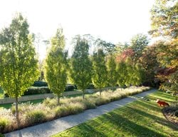 Landscape Design Pictures Lisa Roth   Landscape Architect Devon, PA
