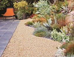 Landscape Design Pictures Living Green Design San Francisco, CA