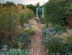 red brick path foliage landscape design pictures daniel shea contemporary garden design norfolk uk