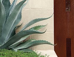 Succulent and Cacti Pictures LandWest Design Group Austin, TX