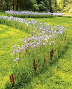 Flower Garden Design find this pin and more on gardens Chanticleer Garden Design Calimesa Ca