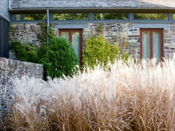 Ornamental Grass Lisa Roth - Landscape Architect Devon, PA