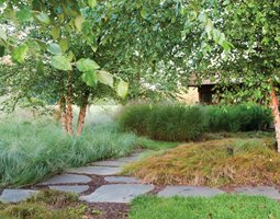 Ornamental grasses garden design ornamental grass jonathan alderson landscape architects inc wayne pa workwithnaturefo