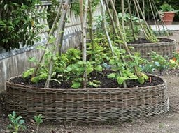 woven wattle raised bed