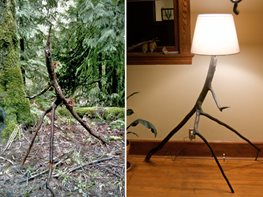 DIY Tree Lamp Garden Design Calimesa, CA