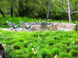 "1 ""Dream Team's"" Portland Garden Garden Design Calimesa, CA"