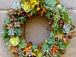 "Fall Décor, Wreath ""Dream Team's"" Portland Garden Garden Design Calimesa, CA"