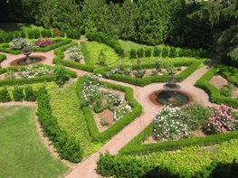 """Dream Team's"" Portland Garden Kevin Lee Jacobs ,"