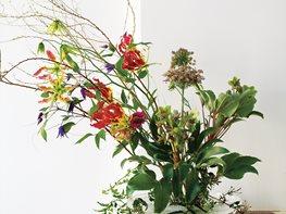 Garden Arrangements how to garden, landscape, plant | garden design
