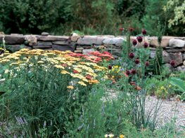 Water Wise Garden Design
