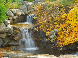 Waterfall, Fall Leaves Garden Design Calimesa, CA
