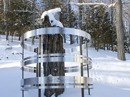 Tree Rings Sculpture, Pat Webster Site & Insight North Hatley, Quebec