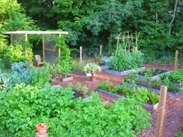 Creating a Raised Bed Garden Kevin Lee Jacobs ,