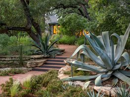 Austin Garden, Native Garden Ten Eyck Landscape Architects Austin, TX