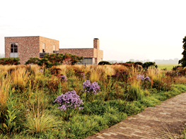 Piet Oudolf's Next Wave, Photo Gallery Garden Design Calimesa, CA