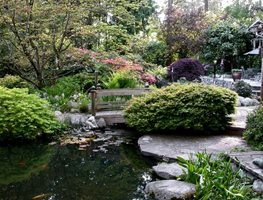 "Garden, Spring ""Dream Team's"" Portland Garden Robin Hopper (Homeowner) Metchosin, British Columbia"