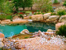 "Natural Shoreline Landscape Design ""Dream Team's"" Portland Garden Garden Design Calimesa, CA"