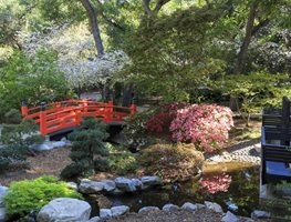 Descanso Gardens, Red Bridge, Japanese Style Garden Shutterstock.com New York, NY
