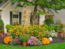 Fall Gardening Ideas, Fall Gardening Tips Garden Design Calimesa, CA