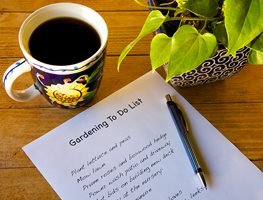 Gardening, To Do List Garden Design Calimesa, CA