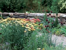 Water Wise. Share: Gravel Garden, Gardening In Drought Garden Design  Calimesa, CA