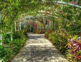 Naples Botanical Gardens, Tropical Garden, Covered Walkway Garden Design Calimesa, CA