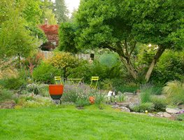 Summertime, Garden Winterbloom Tigard, OR