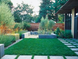 Minimalist Garden, Small Lawn Ground Studio Monterey, CA