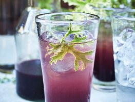 Huckleberry Shrub, Purple Drink Ten Speed Press Berkeley, CA