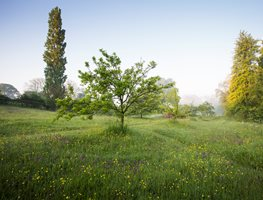Blog of Garden Design Magazine   Garden Design