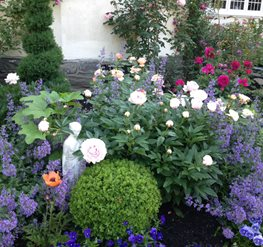 Awesome Front Rose Garden, Perennials Casey Pradelli (Homeowner) Haverford, PA