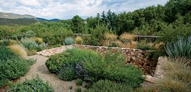 New Mexico Water-Wise Garden Design with Nature Santa Fe, NM