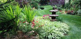 My Garden: An Eclectic Garden Delights with Unexpected Surprises Garden Design Calimesa, CA