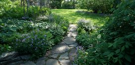 Shade Garden, Garden Path Growing Green in Pennsylvania Rick Darke LLC Landenberg, PA
