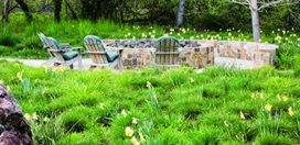 1 Garden Design Calimesa, CA