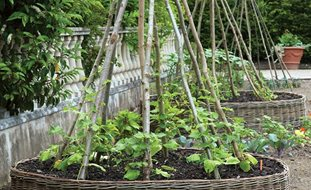 Country Vegetable Garden Ideas vegetable garden designs - creditrestore