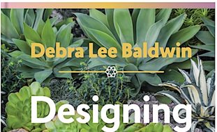 designing with succulents debra lee baldwin decorating with succulents garden design calimesa ca