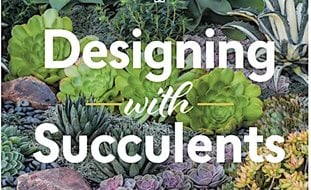 Bon Designing With Succulents, Debra Lee Baldwin Decorating With Succulents  Garden Design Calimesa, CA