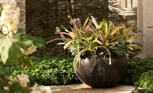 container gardening ideas hoerr schaudt chicago il - Container Garden Design Ideas