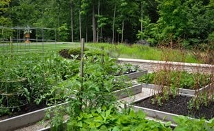 Bountiful McCullough's Landscape & Nursery LLC Johnstown, OH